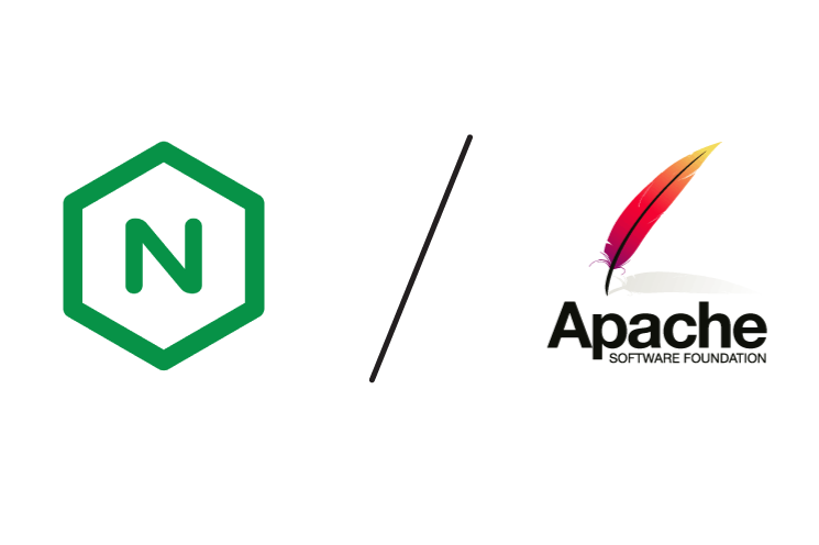 Nginx or Apache server